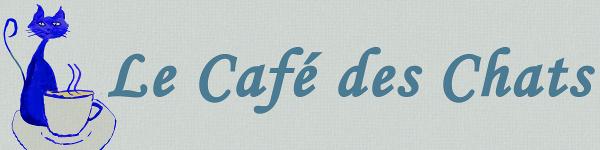 [¿!Güat¡?] Abre en Francia una cafetería con gatos.